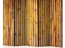 Paraván - Bamboo Garden II [Room Dividers]